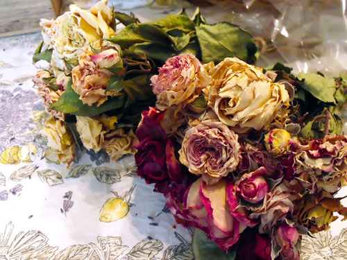 Dried_flowers_Roses