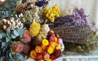 dried_flowers-h