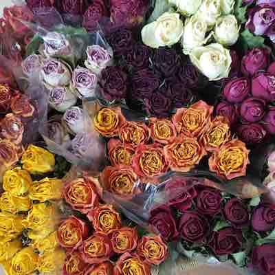 Roses-400x400